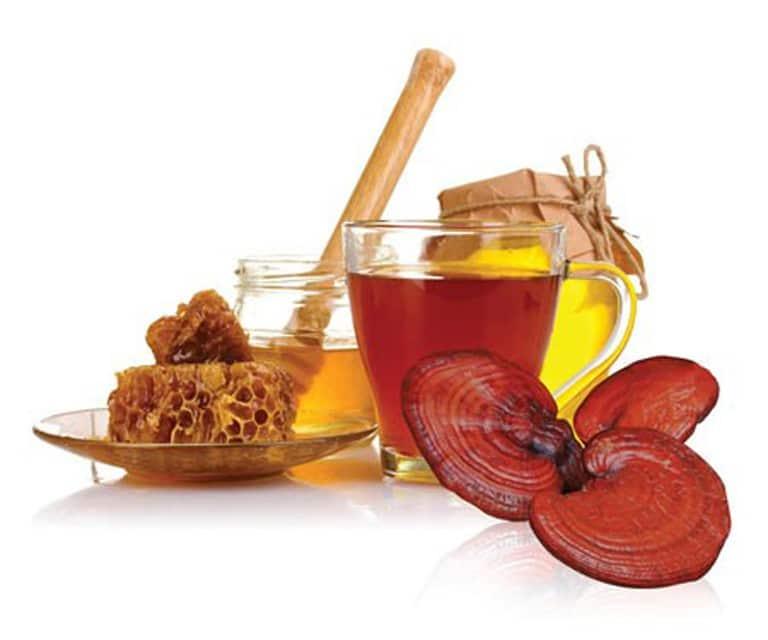 Nấm linh chi uống với mật ong - Pha chế như thế nào để đem lại hiệu quả tốt nhất?
